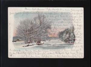 Winterlandschaft See Glitzer Eis Bäume Leipzig /Gunzenhausen 15. + 16.1.1901