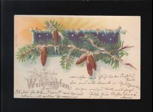 Fröhliche Weihnachten Tannenzweig Reisig Zapfen, Barmen/Osnabrück 23.+24.12.1901