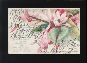 O gönnt ins Freie mir den Lauf, O öffnet Thür und Riegel Blumen, Bonn 11.5.1901