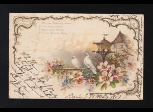 Tauben Blüten Wie die Täubchen flattern in den Lenz, Bonn/Paderborn 28.3.1901