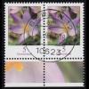 2480 Elfenkrokus 5 Cent - waagerechtes Paar, VS-O BERLIN 4.9.08