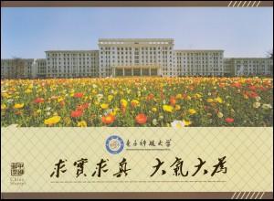China 12 x 3826 Sonnenvogel mit Zierfeldern im Sonderbogen Z13 im Folder **