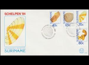 Surinam Muscheln 1984 - Satz mit 4 Werten auf Schmuck-FDC