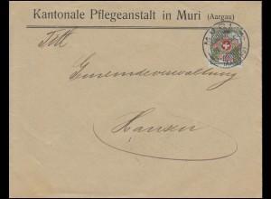Portofreiheitsmarke 5I Alpenrose EF Brief Kantonale Pflegeanstalt MURI 29.1.1918
