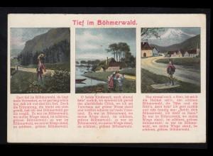Braunschweig Vorphilatelie Briefhülle Rund-O BLANKENBURG 9.6. nach Walkenried