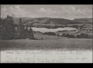 Ansichtskarte Titisee Panorama, Titisee 26.5.1901 nach Genua/Italien