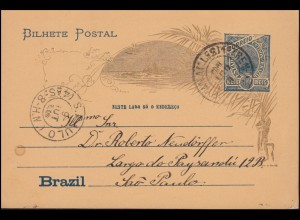 Brasilien Bild-Postkarte 19/29 nach Sao Paulo 9.8.1905