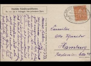 Bahnpost DRESDEN-HOF (SAALE) Zug 1013 - 11.8.22 auf Künstlerpostkarte Defregger