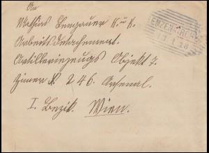 Österreich 221 Kaiser Karl I. als EF Brief Strichstempel ENZENKIRCHEN 13.1.1918