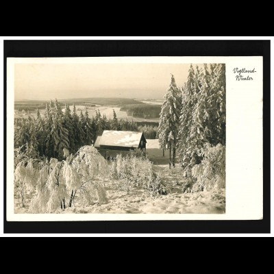 123 Posthorn 2 Pf. Paar MeF Drucksache Honig & Bienen HAMBURG-LOKSTEDT 1953