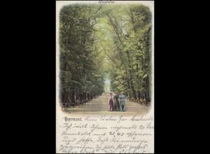 Ansichtskarte Pyrmont Hauptallee, POLLE 2.8.1901 nach HALBERSTADT 3.8.01