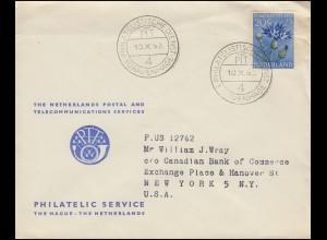 1951 DDR 25 Pf EF auf Postkarte aus Holz mit SSt SEIFFEN Spielzeugdorf 7.10.74
