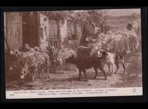 Königreich Jugoslawien Zahlungsanweisung NOVI SAD 17.8.1927 nach VINKOVCI 19.8.