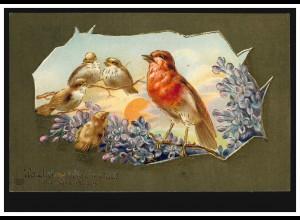 Tiere-AK Die Vogelmutter und ihre Kinder, Prägekarte BERGISCH-NEUNKIRCHEN 1911