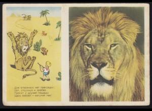 Humor-AK aus Russland: Die Löwenjagd, ungebraucht, um 1955