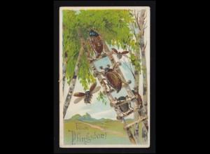 Tiere-AK Pfingsten Maikäfer auf der Leiter im Birkenwald, 30.5.1914