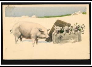 Neujahr-AK Drei Ferkel in einer Holzkiste mit Schweinemutter, BUDAPEST 28.12.14