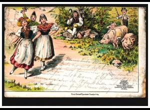 Tier-AK Schweinehüten und Trachtengruppe, ISERNHAGEN 14.8.1904 nach BURGDORF