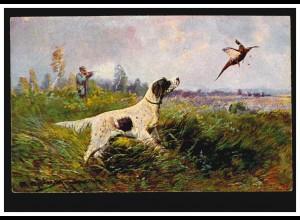 Tiere-AK Jäger mit Hund bei der Fasanenjagd, BIPPEN 5.2.1924