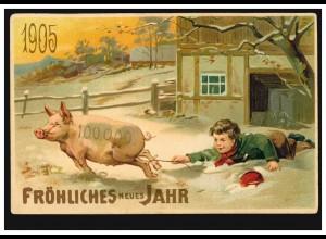 Neujahrs-AK Mit Junge hält für 1905 sein Glücksschwein fest, ungebraucht