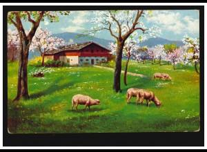 Künstler-AK Landschaft mit Schafen im Frühling, BEVERUNGEN 3.9.1912