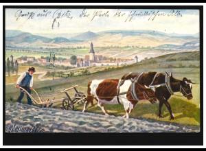 Künstler-AK A. Müller, Bitz: Naturstudien - Ochsengespann beim Pflügen 26.2.1906