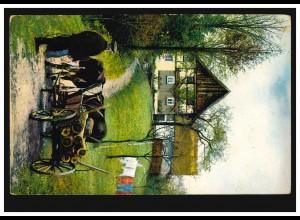 Tiere-AK Forstwirtschaft: Ochsengespann beim Holztransport, gelaufen um 1910