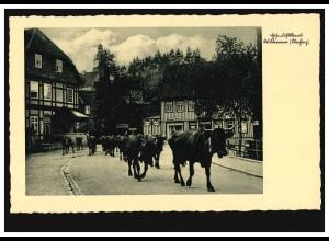 Foto-AK Kurort Wildemann (Oberharz): Rinderherde im Ort, ungebraucht, um 1930
