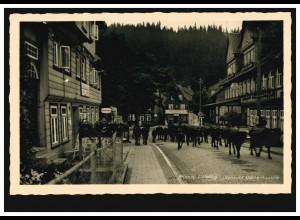 Foto-AK Altenau im Harz Altenauer Damenkapelle Rinderherde, ungebraucht um 1930