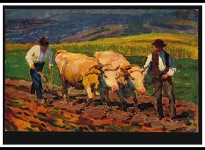 Künstler-AK V. Maly: Ackern - Ochsengespann beim Pflügen, ungebraucht, um 1920