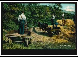 Pferde-AK Irische Heuwagen mit einfachen Vollrädern, gelaufen um 1920