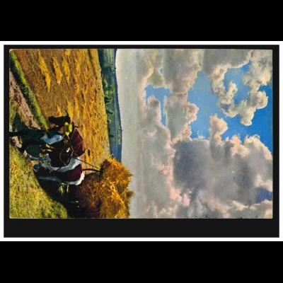 Tiere-AK Ochsengespann bei der Getreideernte, BERLIN SW 68r 31.7.1912