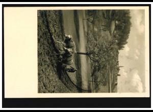 Foto-AK Tiere: Ochsengespann bei der Arbeit, gelaufen 2.7.1942