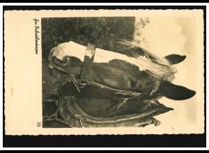 Foto-AK Tiere: Ein Arbeitsuntertan - Pferdeportrait, gelaufen 25.1.1939
