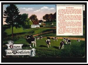 AK Gruss aus Westfalen Rinderherde und Westfalenlied von Rittershaus MINDEN 1917