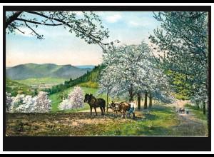 AK Frühlingslandschaft mit Pferdegespann und Ochsengespann, ungebraucht, um 1920