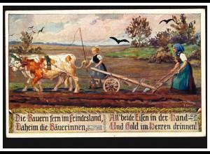 AK Ochsengespann beim Pflügen, ungebraucht, mit Propaganda-Text 1914/1918