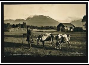 Norwegen Foto-AK Rundhaugen: Same mit seinen Rentieren, NARVIK 25.8.1938
