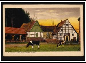 AK Alt-Westfälische Bauernhäuser: Bauernhaus aus dem Siegerland, ungebraucht