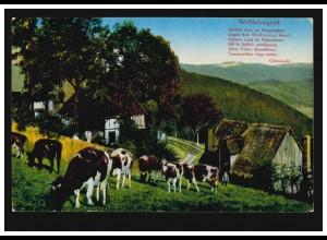 AK Heimatbilder aus Westfalen: Weidende Rinder / Westfalenlied, ungebraucht