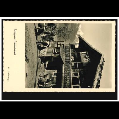 Österreich Foto-AK Pinzgauer Bauernhaus mit Kühen, ungebraucht, um 1930