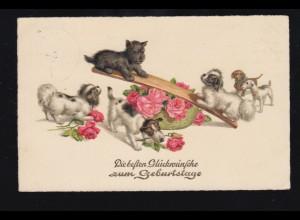 Tiere-AK Geburtstag Hunde-Welpen bei Spielen Wippe Rosen, WEISSENFELS 17.3.1938