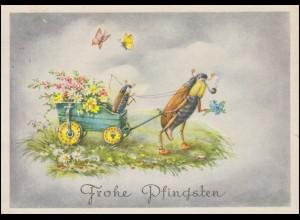 Tiere-AK Pfingsten Pfeiferauchender Maikäfer und Schmetterlinge, HAMBURG 1953