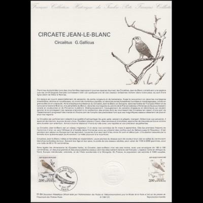 Collection Historique: Schlangenadler / Circaetus gallicus 22.9.1984