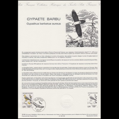 Collection Historique: Bartgeier / Lämmergeier Gypaetus barbatus 22.9.1984