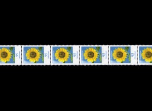 2434 Blumen 95 Cent nk 11er-Streifen aus 500er Rollenanfang 500-495-490, **