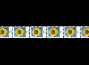 2434 Blumen 95 Cent nk 11er-Streifen Rollenende 5-10, **