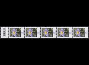 2463 Blumen 50 Cent aus 200er-Rolle, 5er-Streifen mit Codierfeld **