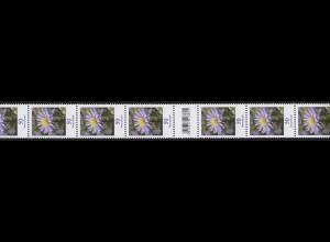 2463 Blumen 50 Cent aus 200er, 11er-Übergang 105-100-95 (2 Codierfelder) **