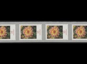 2514 Blumen 35 Cent sk 11er-Übergang 3/4-stellig 995-1000-1005, **